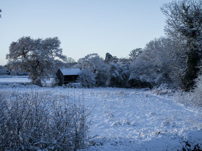 <h2>Winter in Bunbury</h2><div class='slide-content'><p><span class='highlight'>View field next to Wakes Meadow</span></p></div>